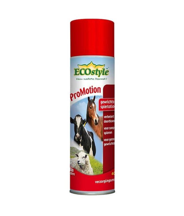 Promotion Spray Ecostyle 400ML
